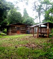 Omo Forest Erin Camp