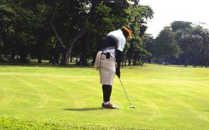 Ikoyi Golf Club golf course